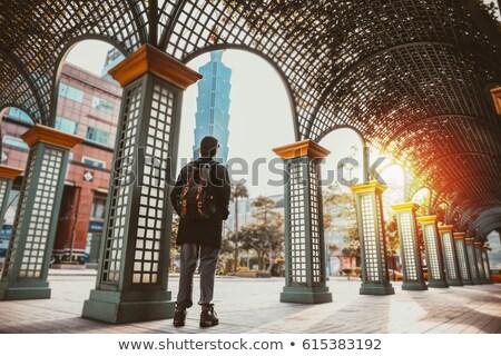 Férfi turista áll hegy díszlet néz Stock fotó © stevanovicigor