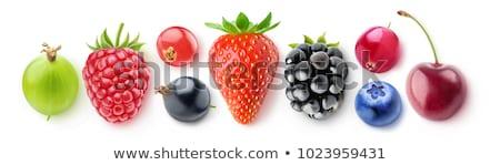 fehér · fekete · piros · ribiszke · gyümölcs · három - stock fotó © gbuglok