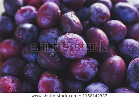 Fresh plums  Stock photo © bdspn