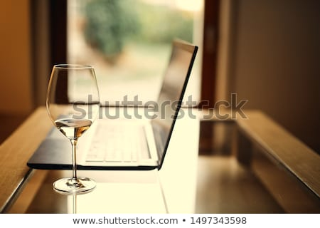 Laptop and Wine Black and White stock photo © 2tun