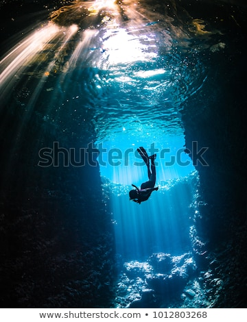 水中 洞窟 実例 自然 背景 ストックフォト © bluering