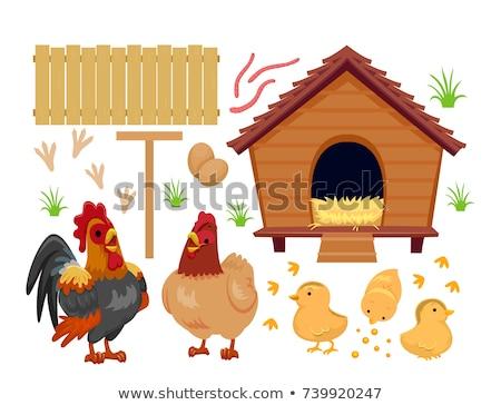 Cartoon Chicken Bed Stock photo © cthoman