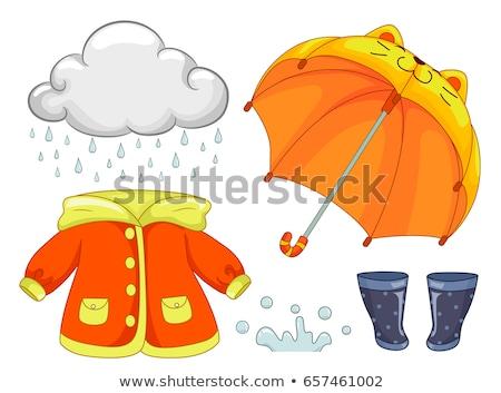 дождливый день Элементы иллюстрация подобно дождь Сток-фото © lenm