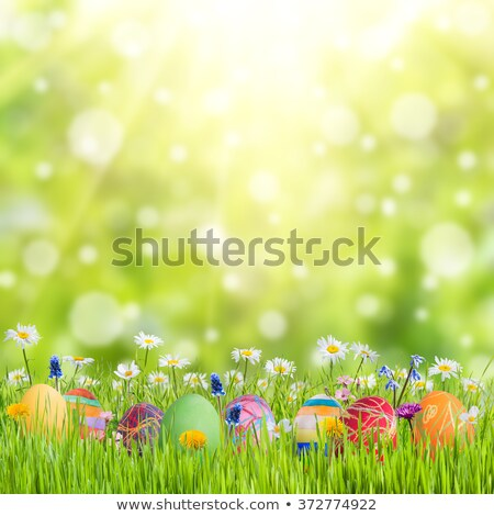 easter background with easter eggs and spring flowers stock stock photo © dashapetrenko