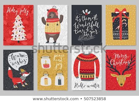 Vrolijk christmas beer vos ingesteld poster Stockfoto © robuart
