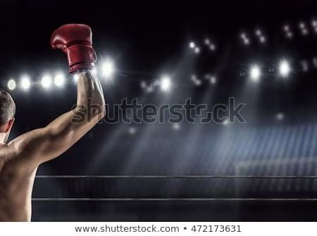 Боксер · жира · пингвин · перчатки · 3d · визуализации · здоровья - Сток-фото © ribah