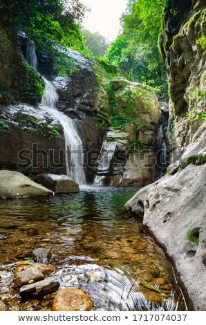 Vízesés passz Ausztrália kicsi kő medence Stock fotó © lovleah