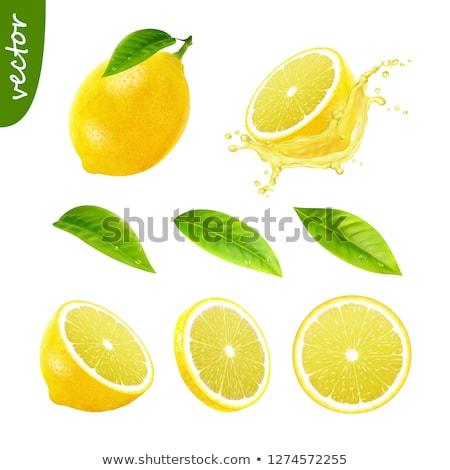 Photo stock: Fresh Juicy 3D Vector Lemon Slice Closeup