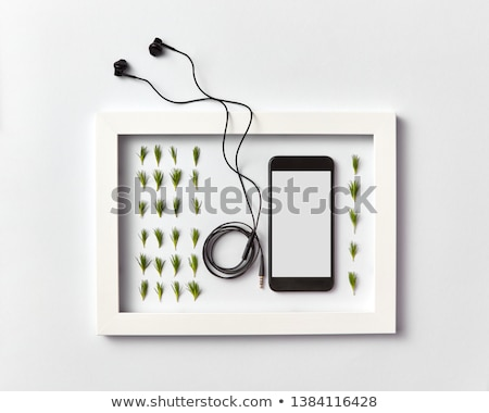 Frame with organic pine needles pattern, smartphone mock-up and headphones on a light background. Stock photo © artjazz
