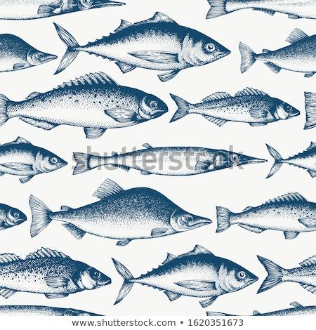 seamless pattern with different fishes sketch vector illustration stock photo © arkadivna
