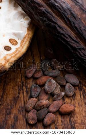 Cacao bonen focus voorgrond Stockfoto © joannawnuk