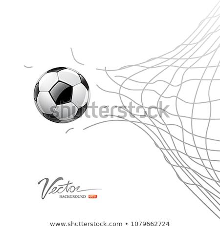 white football net on green grass background stock photo © zurijeta