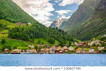 Pequena cidade norueguês água verde azul edifícios Foto stock © ildi