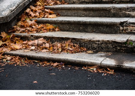 vintage staircase covered with brown leaves stock photo © sirylok
