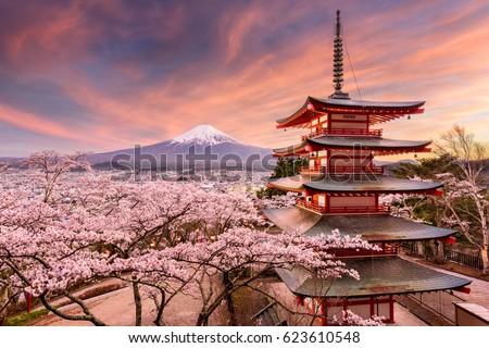 Fuji örnek Japonya kış göl Japon Stok fotoğraf © lenm