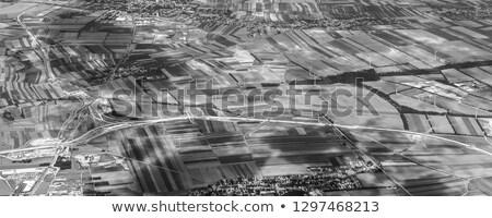 Вена крыло полях Сток-фото © meinzahn