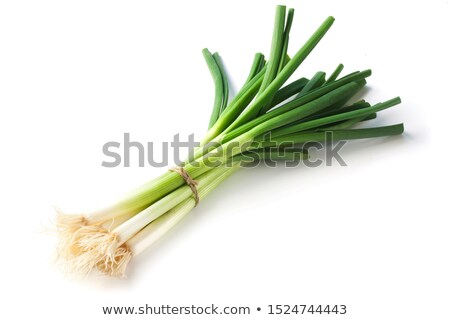 Bunch of green onions Stock photo © fuzzbones0