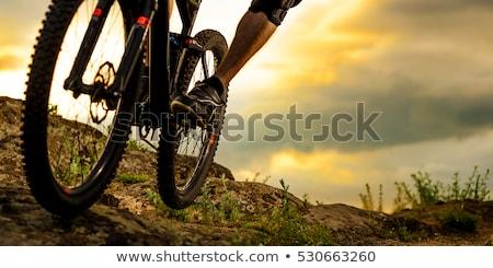 Stock fotó: Közelkép · piros · fekete · hegy · bicikli · reggel