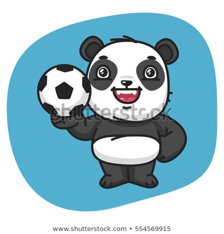 Cartoon panda calcio illustrazione giocare sport Foto d'archivio © cthoman