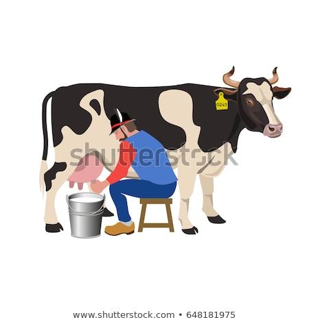 Farmer Milking Cow Illustration Stock photo © artisticco
