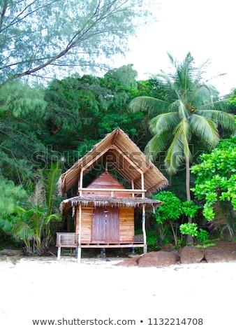 Legno capanna spiaggia illustrazione casa mare Foto d'archivio © colematt
