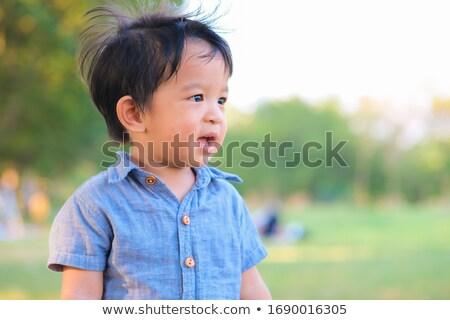 menina · campo · leão · menina · feliz · coroa · amarelo - foto stock © lopolo
