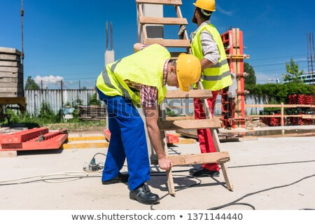 Two young blue-collar workers leaning a ladder Zdjęcia stock © Kzenon
