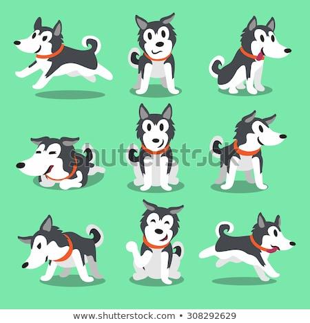 funny spotted dog cartoon character Stock photo © izakowski