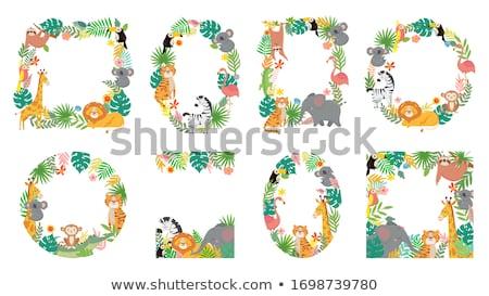 Foto stock: Establecer · monos · naturaleza · marcos · ilustración · diversión
