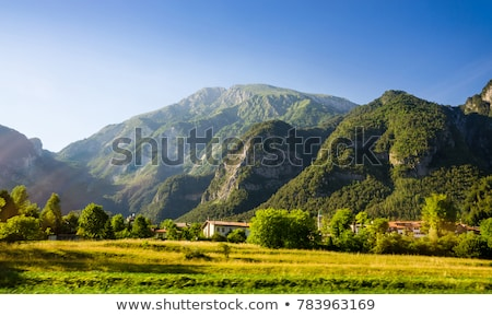 Schilderachtig berg alpen landschap Stockfoto © lichtmeister