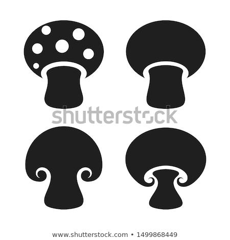 Cogumelos ícone preto e branco natureza projeto arte Foto stock © Imaagio