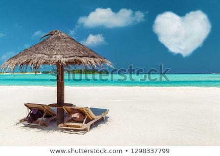 2 モルディブ ビーチ ロマンチックな 熱帯ビーチ 中心 ストックフォト © dolgachov