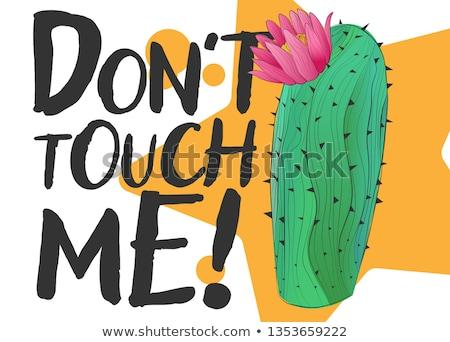 Toque me cute dibujado a mano cactus impresión Foto stock © Zsuskaa