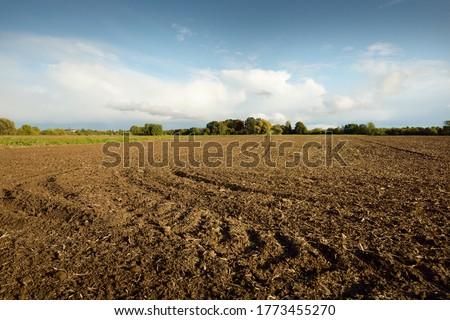 plowing the field Stock photo © courtyardpix