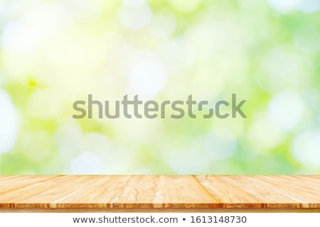 Sunny day in the wood Stock photo © dengess