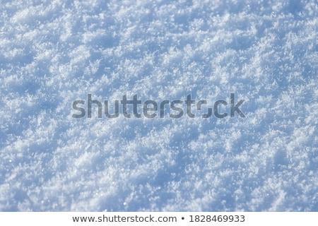 eenzaam · engel · sneeuwvlokken · foto · meisje · witte - stockfoto © dolgachov