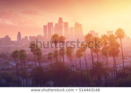 Pôr do sol Los Angeles cidade urbano linha do horizonte vermelho Foto stock © meinzahn
