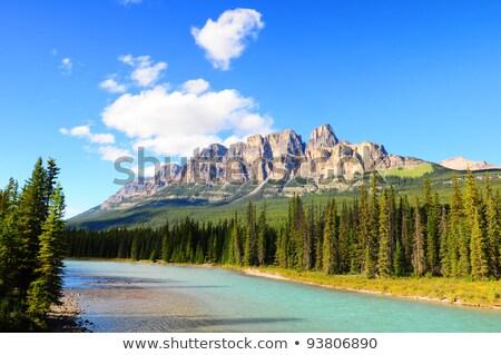 kastély · hegy · park · Kanada · íj · folyó - stock fotó © dnsphotography