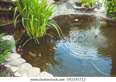 Large pond with fountain Stock photo © michaklootwijk