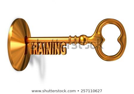 Eğitim altın anahtar anahtar deliği yalıtılmış beyaz Stok fotoğraf © tashatuvango