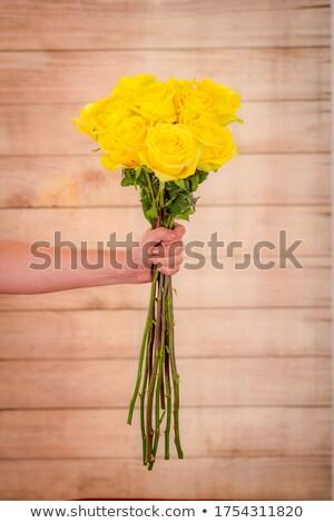 желтый цветения закрывается темно цветок саду Сток-фото © fotoquique
