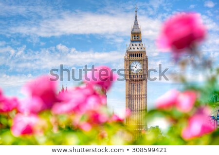 Big Ben,, London UK. View from a public garden with flowers and trees Stock photo © photocreo