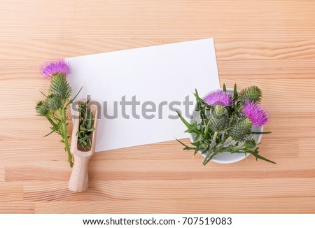 milk thistle on a wooden spoon with copy space stock photo © madeleine_steinbach