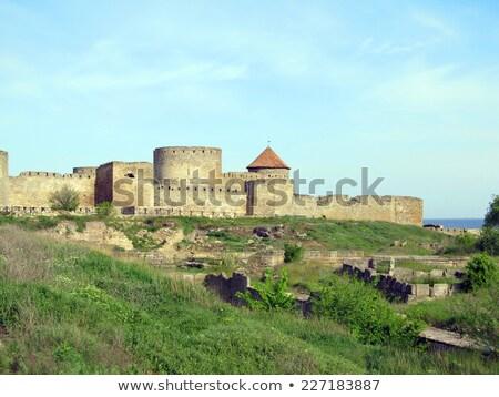 замок Украина здании строительство стены Мир Сток-фото © Massonforstock