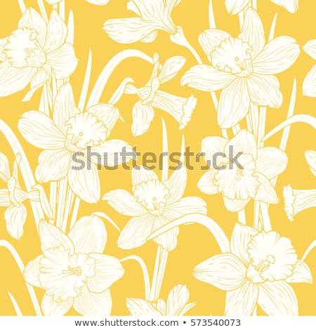 Seamless background design with daffodil flowers Stock photo © colematt