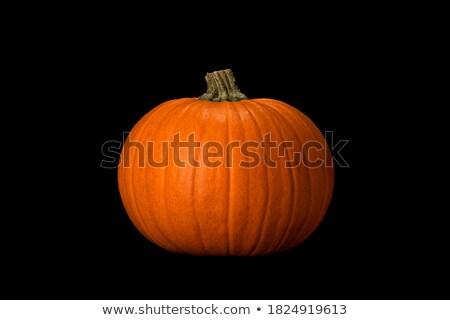 Pumpkins on dark background. Stock photo © choreograph