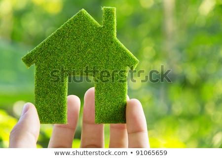 Groene energie macht icon eps10 helling doorzichtigheid Stockfoto © TheModernCanvas