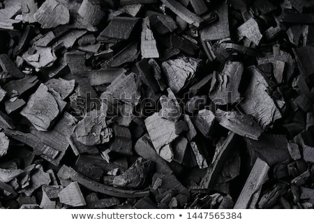 Charcoal Stock photo © Stocksnapper
