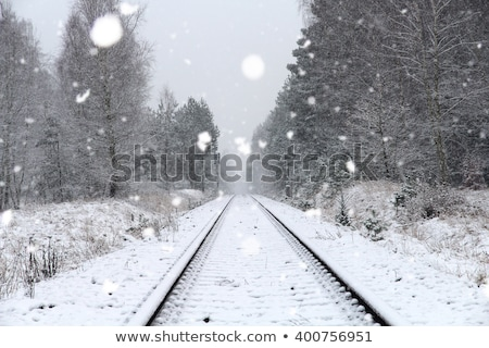 Stock photo: Railroad tracks in Winter with snow