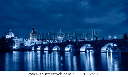 View of the Castle in Prague at night. blue toning Stock photo © Zhukow